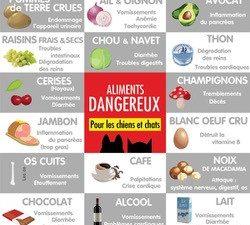 16 aliments toxiques